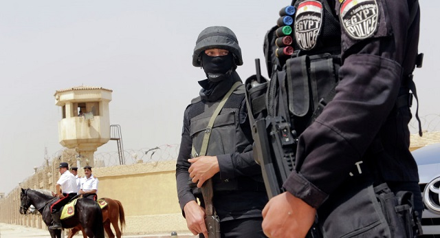 Egypt police trap and kill top militants: govt