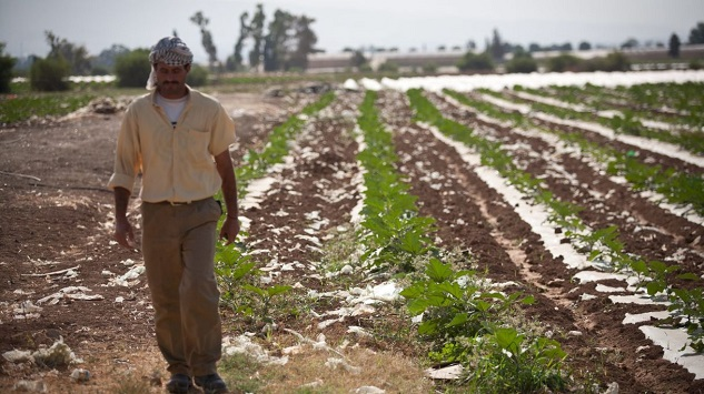 UN chief concerned by West Bank land expropriation