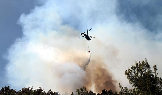 Greek firefighters tackle blazes near Athens