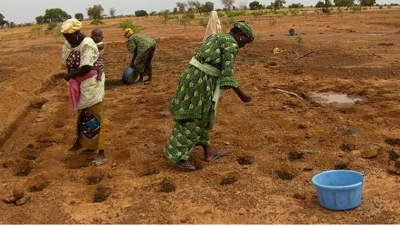 Niger drought leaves schools closed