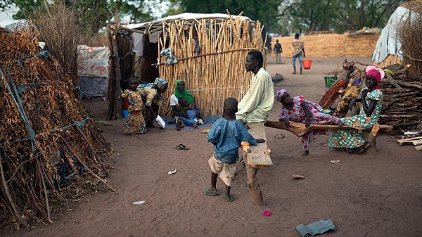 10,000 refugees from Cameroon arrive back in Nigeria