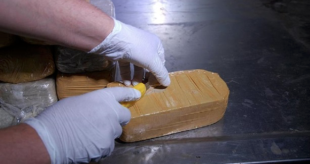 Turkish police make drugs bust at Istanbul airport