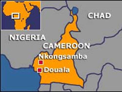 Two killed in suspected Boko Haram attack in Cameroon