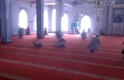 Children in Masjids