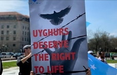 US senators seek answers from firm on reported forced Uyghur labor