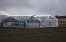 US lifts final import restrictions on Japanese farm products