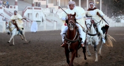 Traditional horse race in Algeria