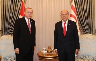 Erdogan to receive Turkish Cypriot leader on Monday