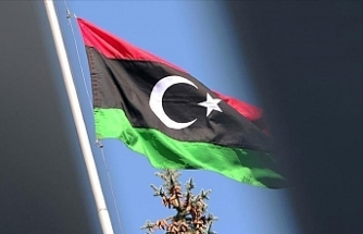 Libya's State Council welcomes UNSC resolution on polls