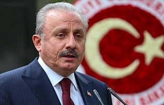 Turkish parliament head rejects Biden's remarks on 1915