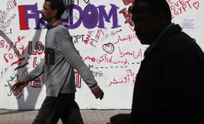 Egypt constitution suspended, parliament dissolved