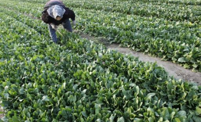 U.N. warns food security a risk to Asia-Pacific