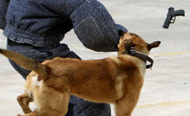 Los Angeles police dogs trained to be racist