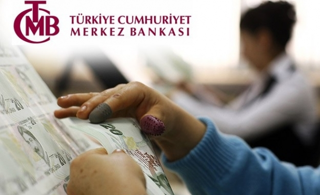 Turkey's CB pumps US$882 mln into market