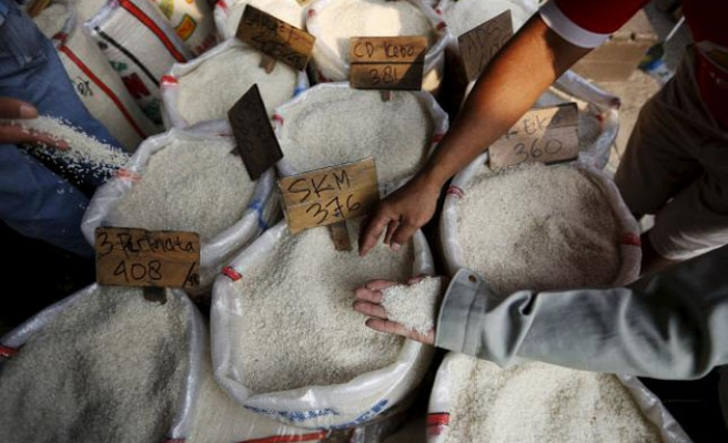 Indo. minister fears govt sabotage in contaminated rice