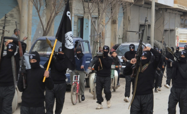 Syrian opp. declares ISIL 'capital' military zone