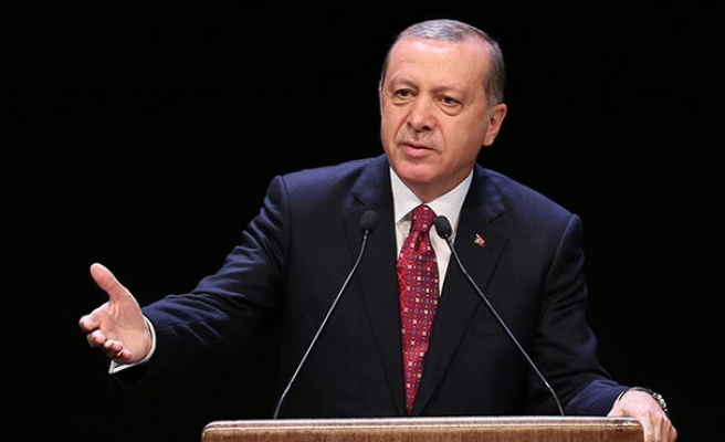 Turkish lira gains on US dollar after Erdogan's remarks