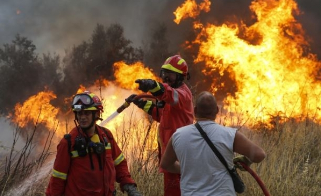 Death toll hits 74 from Greek wildfires