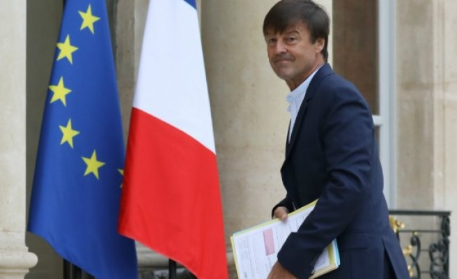 French environment minister quits government