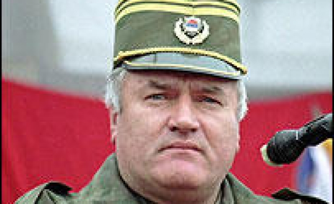 Serbian media fan Mladic rumours