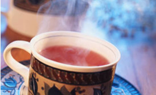 China scientists: Tea can help fight obesity