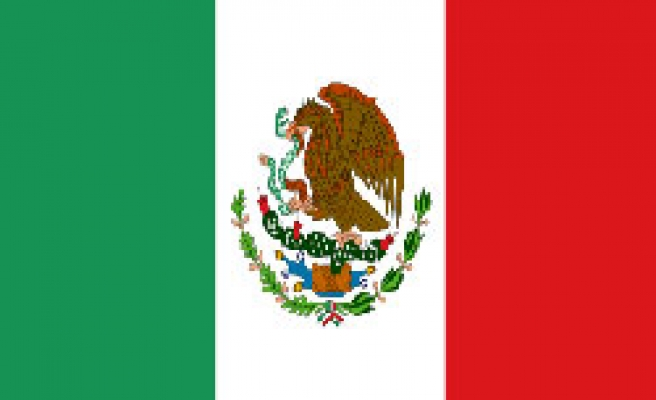 Mexican President replaces energy minister