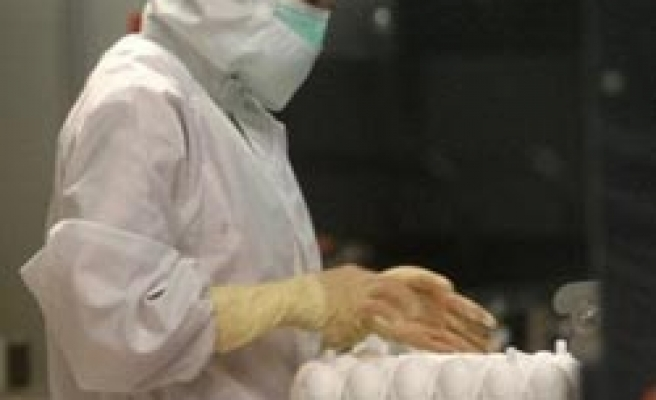 Iran reports swine flu death: state radio