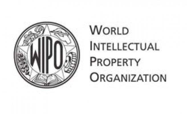 18 developing countries form intellectual property group