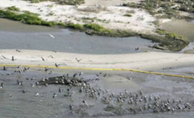 Oil slick reaches US shores, emergency declared