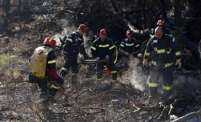 Israel extinguishes deadly forest fire with foreign help