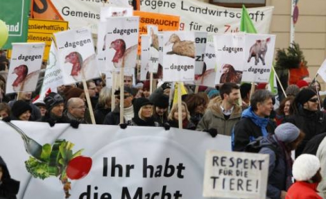 Germans protest genetic engineering after dioxin scandal