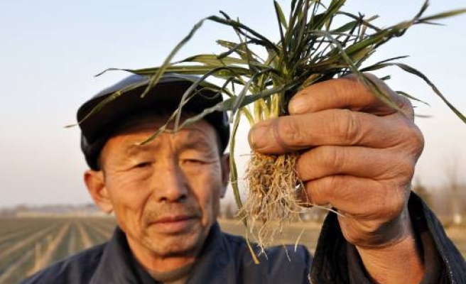 China province faces worst drought in a century