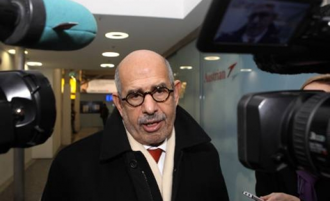 Egypt's ElBaradei 'ready for interim govt'